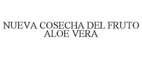 NUEVA COSECHA DEL FRUTO ALOE VERA