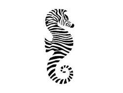 The Salty Zebra LLC