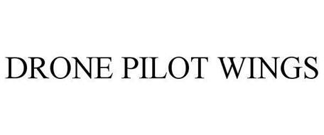 DRONE PILOT WINGS Trademark of THISISTRUE, Inc  Serial