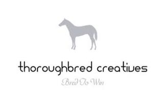 THOROUGHBRED CREATIVES BRED TO WIN