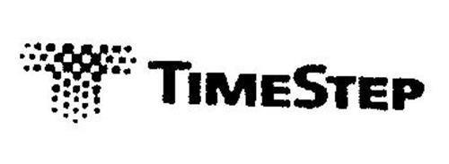 T TIMESTEP