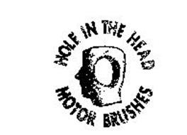 HOLE IN THE HEAD MOTOR BRUSHES