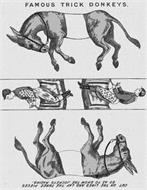 FAMOUS TRICK DONKEYS. CUT ON THE LINES AND LAY THE THREE PIECES SO AS TO SHOW THE JOCKEYS RACING.