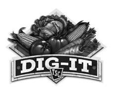 DIG-IT TSC