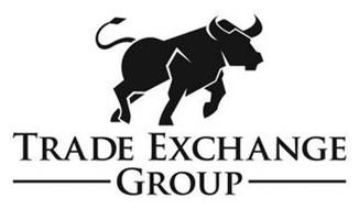 TRADE EXCHANGE GROUP