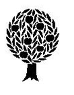 TREE OF KNOWLEDGE (H.K.) LIMITED