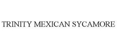 TRINITY MEXICAN SYCAMORE