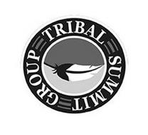 TRIBAL SUMMIT GROUP