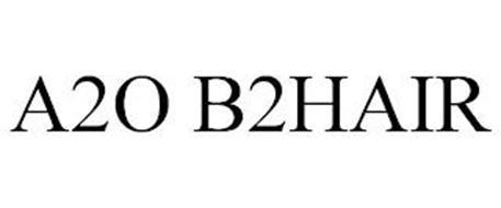 A2O B2HAIR