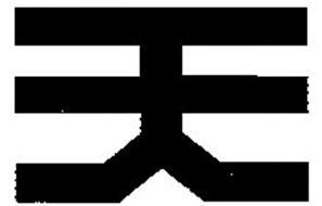 TSUNEISHI HOLDINGS CORPORATION