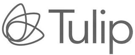 TULIP & TULIP DESIGN