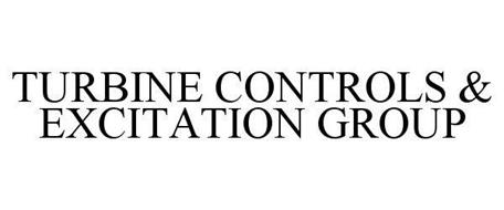 TURBINE CONTROLS & EXCITATION GROUP