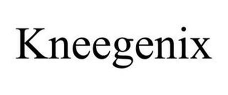 KNEEGENIX