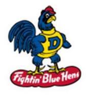 D FIGHTIN' BLUE HENS