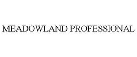 MEADOWLAND PROFESSIONAL
