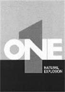 1 ONE NATURAL EXPLOSION