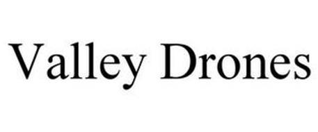 VALLEY DRONES