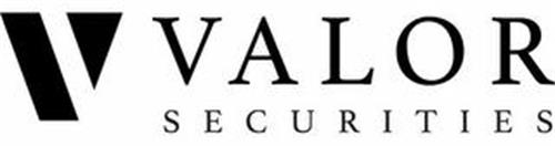 V VALOR SECURITIES
