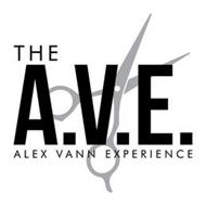 THE A.V.E. ALEX VANN EXPERIENCE