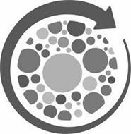 Vax-Immune, LLC
