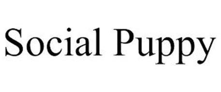 SOCIAL PUPPY
