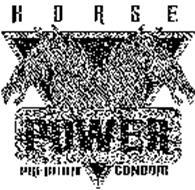 HORSE POWER PREMIUM CONDOM