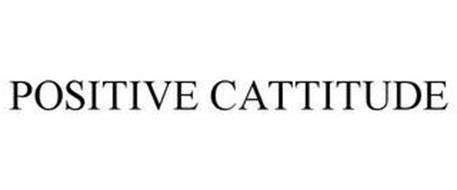 POSITIVE CATTITUDE