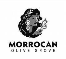 MORROCAN OLIVE GROVE