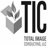 TIC TOTAL IMGAE CONSULTING LLC