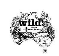 WILD! DESIGNS OF SURFERS PARADISE