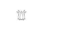 Wild Hibiscus Flower Company Pty Ltd