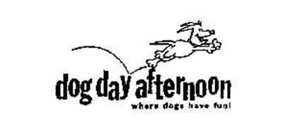 DOG DAY AFTERNOON WHERE DOGS HAVE FUN!