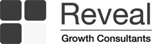 REVEAL GROWTH CONSULTANTS