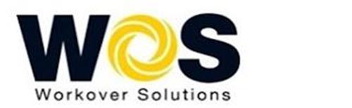 WOS WORKOVER SOLUTIONS