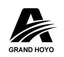 A GRAND HOYO