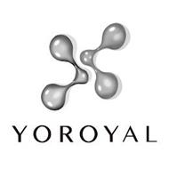 X YOROYAL