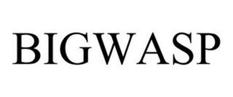 BIGWASP