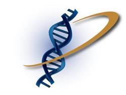 ZyCal Bioceuticals Healthcare, Inc.
