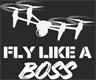 Trademark Search -FLY LIKE A BOSS