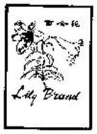LILY BRAND