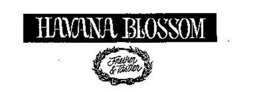 HAVANA BLOSSOM FRESHER & TASTIER