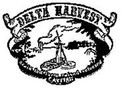 DELTA HARVEST GRAIN FED FARM RAISED SELECTED CATFISH