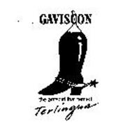 GAVISCON THE ANTACID THAT TAMED TERLINGUA