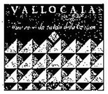 VALLOCAIA VINO ROSSO DA TAVOLA DELLA TOSCANA BINDELLA