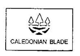 CALEDONIAN BLADE