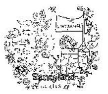 THE SANDYLANDERS SANDYLAND SERIES I'M SNORKIE SNORKEL SID SQUID I'M BUBBLES OCTOPUS O.O.8. JAWSIE SIMON