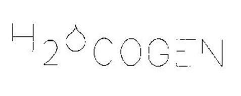 H20 COGEN