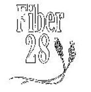 FIBER 28