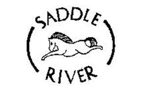 SADDLE RIVER