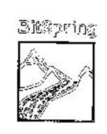 BITSPRING